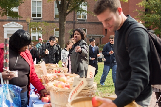 Students choosing apples on campus